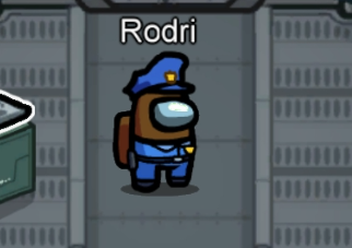 Police officer skin combo among us